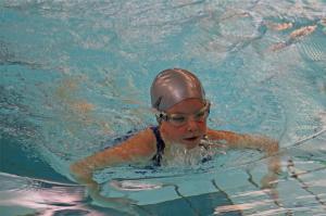 Neujahrsschwimmen 2017 3